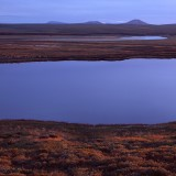 Midnight sun illuminating the tundra landscape. Noatak National Preserve.