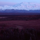 Mt McKinley dominates the surrounding landscape. Denali National Park.