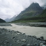 Upper reaches of a glacially fed stream featuring braided gravel bars due to fluctuations in flow. Glacier Creek, Wrangell St. Elias National Park.