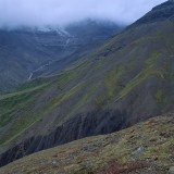 Wrangell St. Elias National Park.