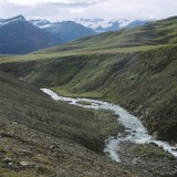 Stream detail. East of the Rohn Glacier. Wrangell St. Elias National Park.